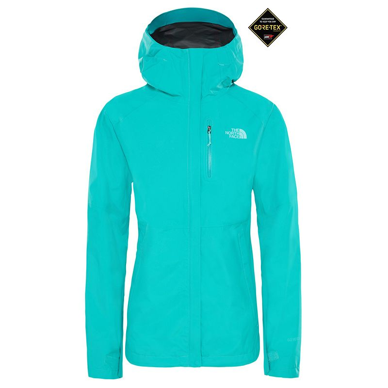 THE NORTH FACE FACE GIACCA DONNA DRYZZLE GTX | DF Sport Specialist
